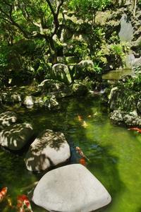 隅田川界隈の風景4 - はーとらんど写真感