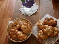 7月最初のレッスンは胡桃パン@少しのイースト - 土浦・つくば の パン教室 Le soleil