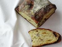 発酵所さんの休日のパン(二種類のチョコとナッツ) - ぱんのみみ
