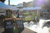 Santa Fe Farmers' Market - 南加フォト