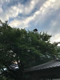 雨の日を過ごす場所 - gin~tetsu~nosuke