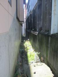 狭い脇道 - Tome文芸館