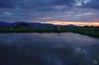 橿原市 藤原宮の夕景:3 - ぶらり記録(写真) 奈良・大阪・・・