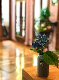 ネコちゃんの花瓶(=^・^=) - 00aa恵比寿美容室  Hana★癒し系ヘアサロン★《ヘアー・ハナ》