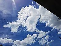 「今日は、晴れ~~ッ!!」って喜んでいたんだけど・・・ - 太田 バンビの SCRAP BOOK