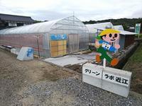 農の未来 - 滋賀県議会議員 近江の人 木沢まさと  のブログ