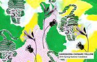 KAMISHIMA CHINAMI YELLOW 2019 Spring/Summer Exhibition - KAMIHSHIMA CHINAMI AOYAMA