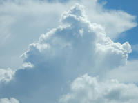 夏の雲 犬編 - 立川は Ecoutezbien  えくてびあん