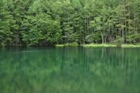 雨の八ヶ岳周辺 - 高原に行きたい