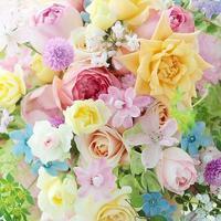 今週末、イチエッタなギフトブーケ販売14~15限定販売と8月プリザーブドレッスンのお知らせ - 一会 ウエディングの花