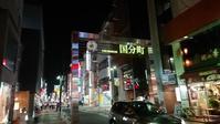 仙台旅行2 - Rino Motor ver.4 | リノモーター