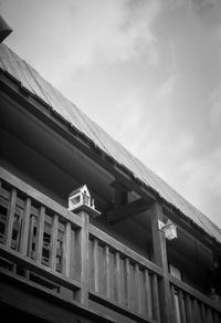 梅雨明けを待ちわびるデッキの巣箱 - Film&Gasoline