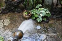 打ち水で夏の涼を楽しむ - 身の丈暮らし  ~ 築60年の中古住宅とともに ~