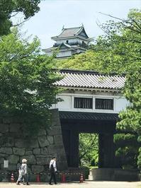 和歌山へランチに走る-和歌山城- - SAMとバイクとpastime