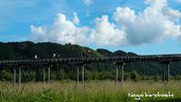 夏空の蓬莱橋 - 長い木の橋
