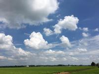 積乱雲、入道雲が綺麗過ぎる! - 陶芸ブログ 限 無 窯    氷裂貫入青瓷の世界