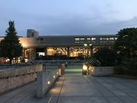 上野公園 夜の顔 - アメリカ輸入のシール♪住所/名前/お好きな文字を印刷してお届け♪アドレスラベルです。