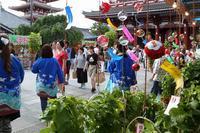 ほおずきを  売る人買う人  撮る人に  ご利益たっぷり              4万6千日 (浅草寺、ほおずき市)  - 旅プラスの日記