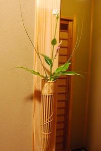 夏の草花 - ハレの日は椿亭の料理でおもてなし   公式weblog