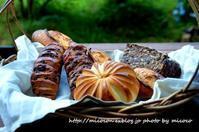 Boulangerie Pâtisserie Adachi - 森の中でパンを楽しむ
