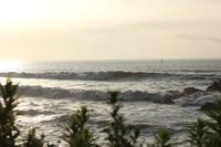 7月10日 徳島へサーフィン - 月曜日はサーフィン・カリアゲくんのブログ