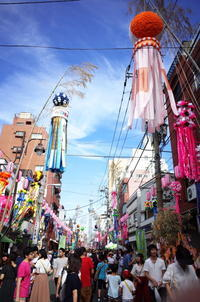 Tokyo Snap 20  かっぱ橋商店街 - 花は桜木、