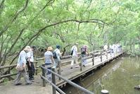小暑のなかで地元学 - 千葉県いすみ環境と文化のさとセンター