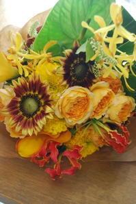 子ども花育ワークショップのお知らせ - 花と暮らす店 木花 Mocca