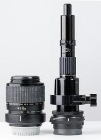 2018/07/11 TS-160 vs CANON MP-E65mm - shindoのブログ