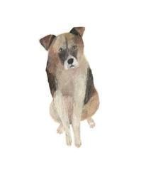 今日の絵「おすわり犬」 - vogelhaus note