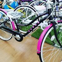 オシャレなワイルドベリー - 滝川自転車店
