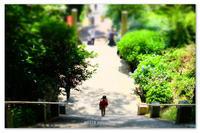 暑い日は。 - Yuruyuru Photograph