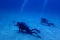 18.7.12ダイブ再開! - 沖縄本島 島んちゅガイドの『ダイビング日誌』