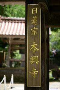 本興寺にて - 今日の空+α2