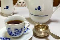 猫ちゃんはココ - 赤煉瓦洋館の雅茶子