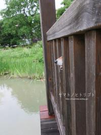 上丼 - yamatoのひとりごと