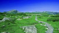 「北アルプス最奥雲の平と鷲羽岳3泊4日」8月5日~8日 - 登山ガイド 西村 哉