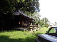 上野田氷川神社周辺動植物記録 - 環感クラブ
