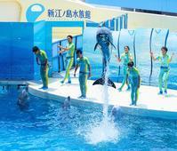 暑い日は新江ノ島水族館に行こう! - エーデルワイスPhoto