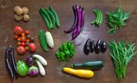 7月中下旬の野菜セット - 農と自然のさんぽみち・やまだ農園日記
