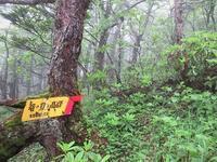 上信越強風の東篭ノ登山と池の平湿原半周Mount Higashikagonoto in Jōshin'etsu-kōgen National Park - やっぱり自然が好き