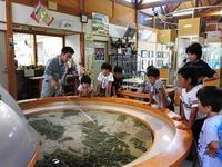 ここは天国/出穂 - 千葉県いすみ環境と文化のさとセンター