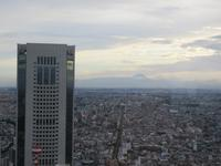 【パークハイアット東京】デラックスツイン55㎡富士山ビュー - お散歩アルバム・・まぶしい夏空