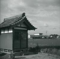 yashica-44A 試写① - 4x4=16