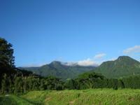 夏野菜とトウモロコシ - 南阿蘇 手づくり農園 菜の風