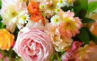 Life is Miracle~TBSテレビ「マツコの知らない世界」に「バラの世界」で出演させて頂きました。 - バラとハーブのある暮らし Salon de Roses