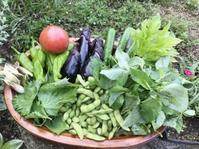 暑い夏を乗り切る天麩羅料理 - 島暮らしのケセラセラ