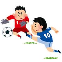 ワールドカップ終了(大杉) - 柚の森の仲間たち