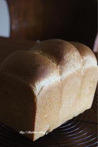 単発レッスンのご案内 - 横浜パン教室tocotoco〜ワンランク上のパン作り〜