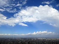 【雨上がりの西新宿をパークハイアットからヒルトンへ徒歩移動】 - お散歩アルバム・・まぶしい夏空
